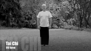 Video clip: Ron Nansink doing tai chi  form